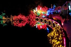 stanley park natal