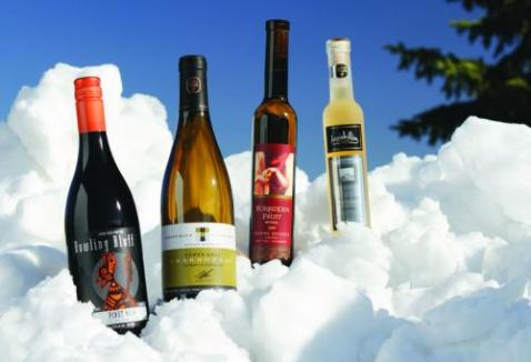 vinhos canadense